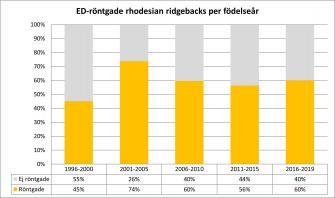 <p>Andel ED-röntgande av antal svenskfödda rhodesian ridgebacks fördelat per hundarnas födelseår. Uppdaterad 2019-06-22.</p>