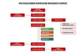 <p>SRRS Organisation</p>